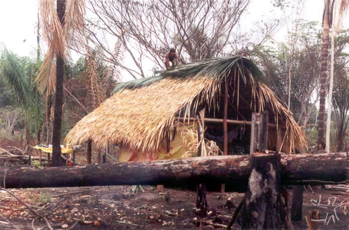 Putting the ridge beam on a house in the village of Ju´í. photo: Edmundo Peggion, 1999