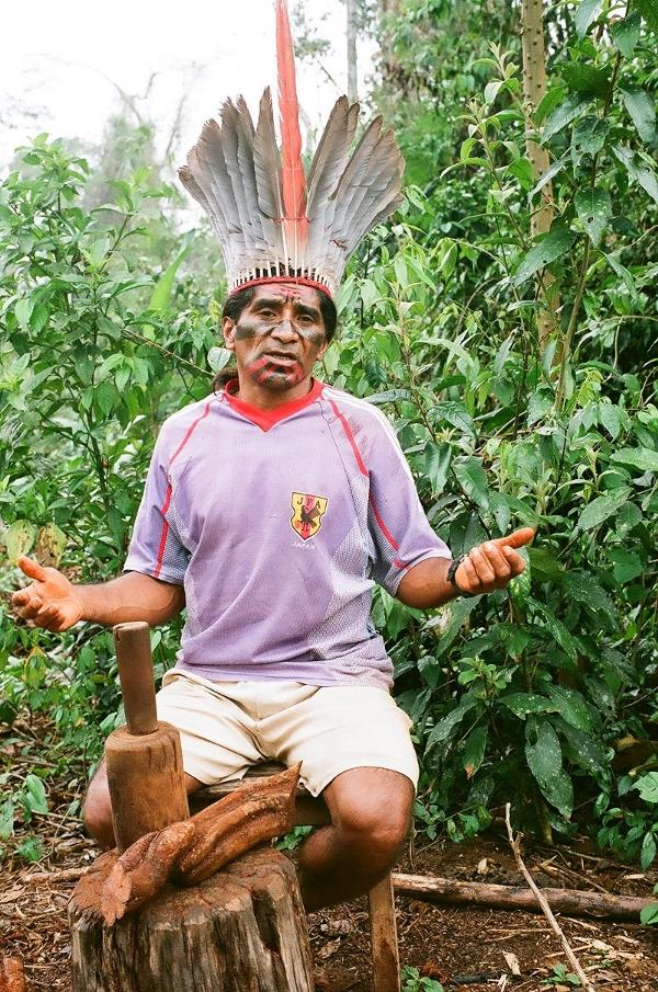 Osmildo Kuntanawa, cacique do grupo, macerando o cipó (Banisteriopis caapi) para o preparo da ayahuasca. Foto: Mariana Pantoja, aldeia Sete Estrelas, 2007