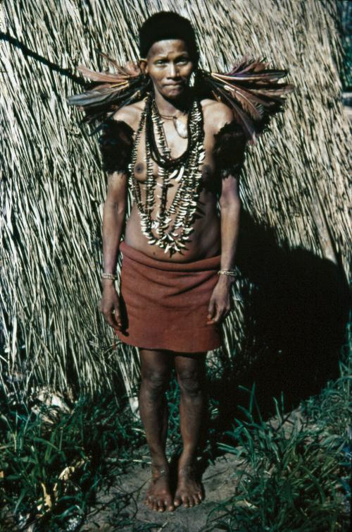 Ricos colares de dentes de macaco, quati e porco-do-mato são resultado de numerosas caçadas. Nos braços, índios de ambos os sexos usam o Xuáre, enfeite de penas de mutum, coladas numa placa de resina. Literalmente o Xuáre quer dizer: E de todos nós! Trata