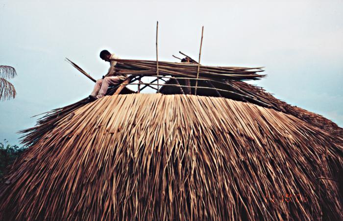 Construção de uma casa tradicional dos Umutina, comunidade Balotiponé, Terra Indígena Umutina, Barra do Bugres, Mato Grosso. Foto: Comunidade Indígena Balotiponé, 2003