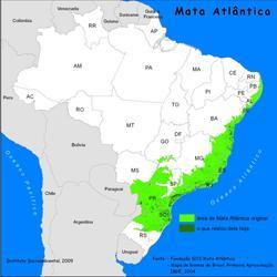 rema_mata_atlântica_bioma2peq
