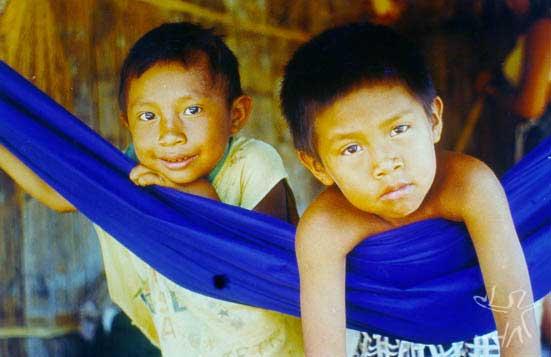 Meninos katukina. Terra Indígena do Rio Campinas (Acre). Foto: Edilene Coffaci de Lima, 1998.