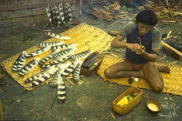 O Araweté Mo´inowï-do fazendo flechas. Foto: Eduardo Viveiros de Castro, 1982.