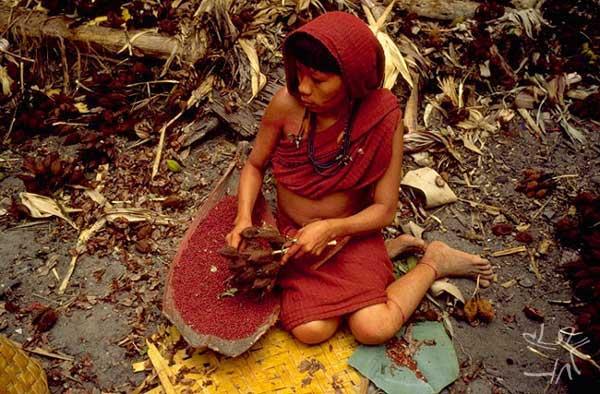 Mulher Araweté separando sementes de urucum. Foto: Eduardo Viveiros de Castro/ISA.