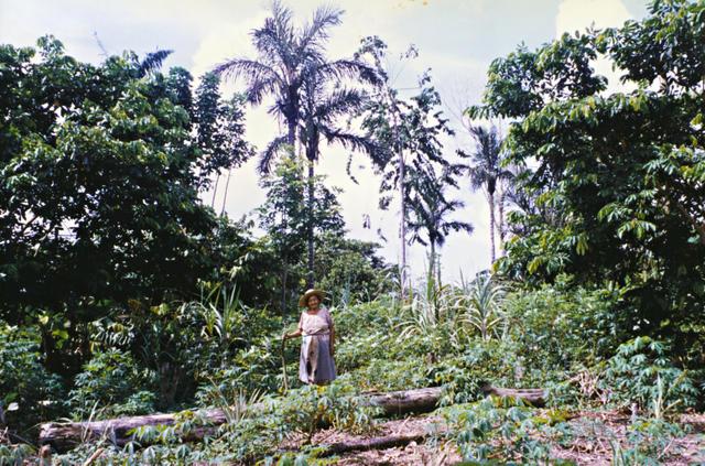 Davina Kaixana, Terra Indígena São Sebastião, Tonantins, Amazonas. Foto: Kênia Gonçalves Itacaramby, 1997
