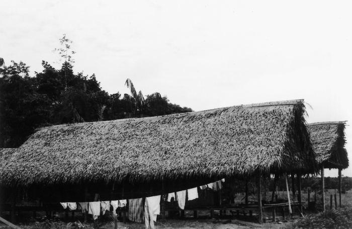 Casas na aldeia Morada Nova do povo Shanenawa, Terra Indígena Katukina/Kaxinawá, Feijó, Acre. Foto: Mônica Barroso, 2003