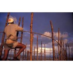 Curral de pesca na APA Arquipélago do Marajó (PA) 1995  / ROBERTO LINSKER/www.terravirgem.com.br