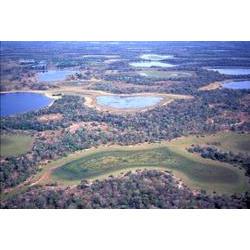 PARNA Pantanal Matogrossense (MT) 1994  / ROBERTO LINSKER/www.terravirgem.com.br