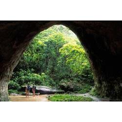 APA Caverna do Maroaga (AM)  / ROBERTO LINSKER/www.terravirgem.com.br