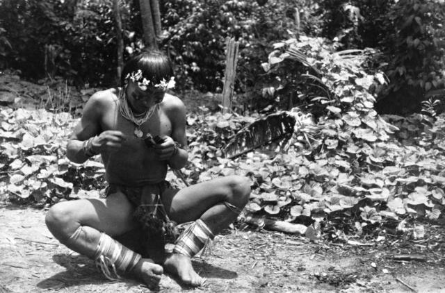 Hixkaryana fazendo uma flecha, rio Mapuera, Terra Indígena Nhamundá-Mapuera. Foto: Protásio Frikel, 1951