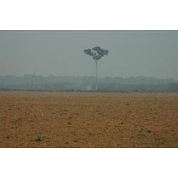 Área desmatada  / Maurício Torres