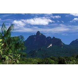 Parque Nacional do Pico da Neblina (AM) - Serra do Padre  / Araquém Alcântara - www.terrabrasilimagens.com.br