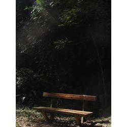 Segundo o ICMBio, em 2009, a visitação em Parques Nacionais ficou abaixo de 4 milhoes turistas, numero extremamente tímido para um país com tantos e tão diversos atributos naturais.  / Silvia Futada