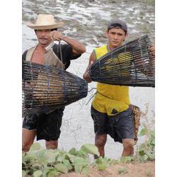 RESEX Marinha de Tracuateua - Pescadores usando o soco 2009  / ® Willian Fernandes/ ICMBio PA