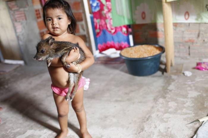 Menina com queixada, Posto Indígena São Luís. Foto: Andy Richter, 2010.
