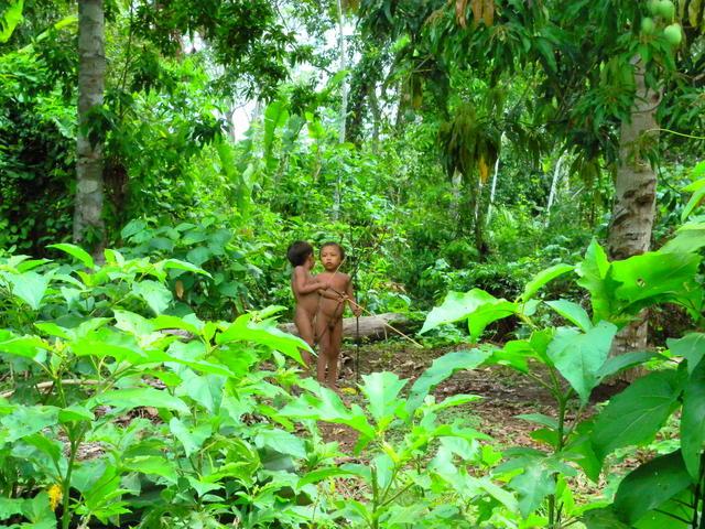 Crianças brincando de jogar flecha nos arredores da casa coletiva, na aldeia Watoriki, Terra Indígena Yanomami (AM). Ana Maria A. Machado