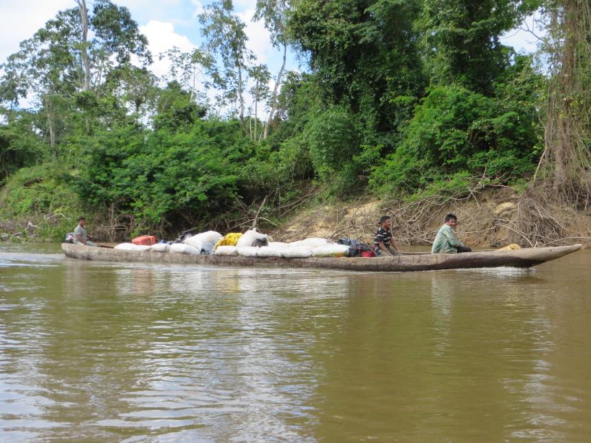 Transporte da castanha do Brasil no rio Anauá. Foto: Selma Gomes/ISA, 2014.