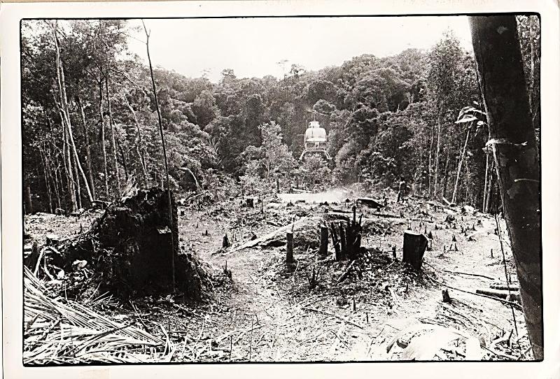Clareira aberta no interior da TI Andirá-Marau pela Elf-Aquitaine. Fonte desconhecida, 1981.
