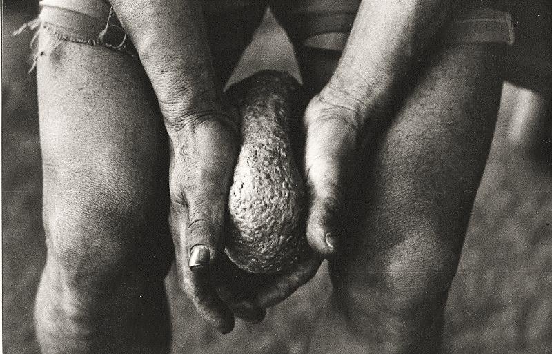Modelando o pão de guaraná, rio Marau. Foto: Sônia Lorenz, 1980.