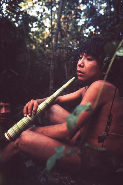 Jovem araweté tocando terewo, uma corneta espiralada feita de brotos de babaçu, na TI Araweté/Igarapé Ipixuna (PA). Foto: Eduardo Viveiros de Castro, 1991