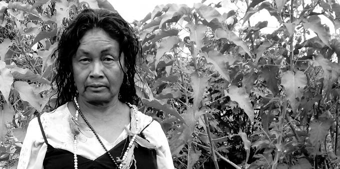 Estela Vera, Tekoha Potrero Guasu. Foto: Lauriene Seraguza, 2016.